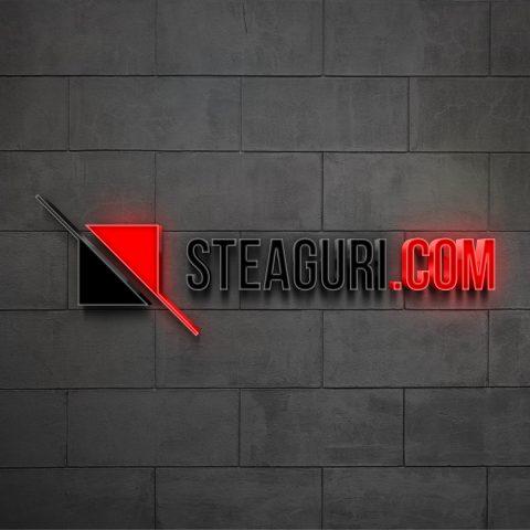 Steaguri_3